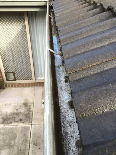 AFTER - GUTTER CLEANING
